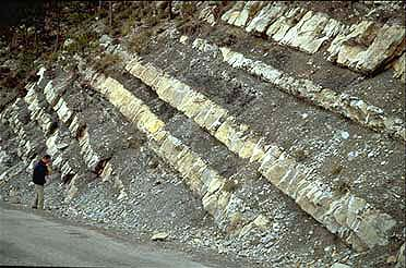 Sedimentology: the study of the distribution of sedimentary strata